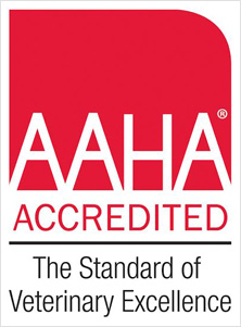 Animal Anchor Hospital is certified member of the American Animal Hospital Association - which means your pet is on good hands with us