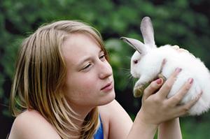 adopt-a-rabbit