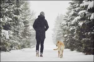 Dry Dog Skin in Massachusetts Winter