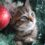 Tips for New Bedford Pet Owners: Holiday Safety for Our Pets