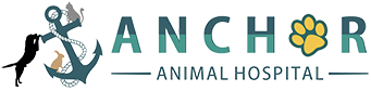 Anchor Animal Hospital