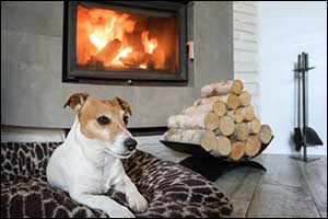 pet fire safety in Southcoast