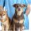 The Required Massachusetts Pet Vaccinations for Cats and Dogs