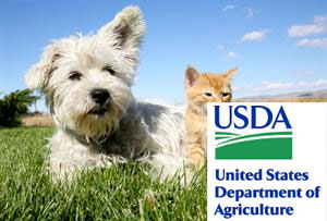 usda-internation-certificates